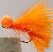 Booby Orange  straggle fritz /BB 12