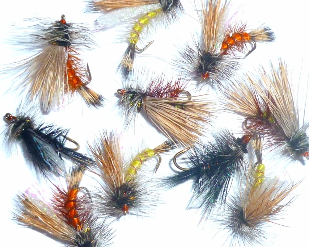 Seducers Dry Flies ,10  x Trout flies,assorted colours