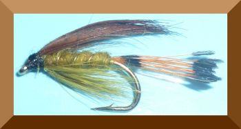 Golden Olive,wet fly  (W 30)