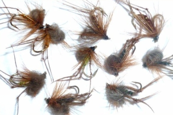 Hoppers ,CDC  loopwing ,10  x Trout flies assorted patterns