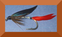 Silver Butcher,Sea trout  fly #10  (ST1)