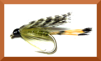 Teal and Olive,wet fly  (W 34)