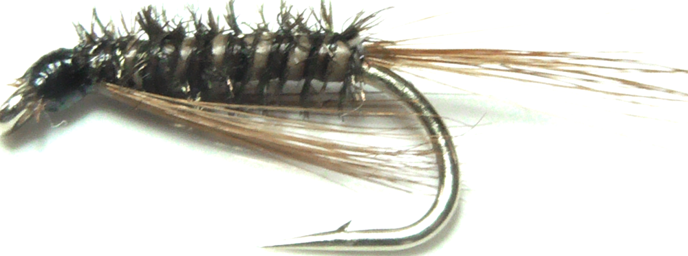 Diawl bach,Brown  Quill #14 / D49