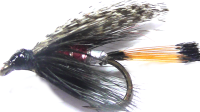 The Peter Ross,wet fly  (W 37)
