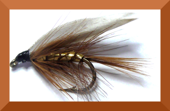 Wickham's Fancy,wet fly  (W 36)