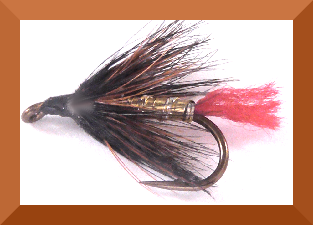 Doobry Wet Fly  (W40)
