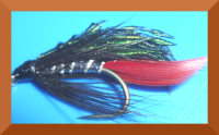 Alexander,Sea trout  fly  #12 (ST2)