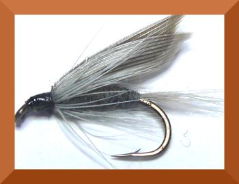 Blue Dunn ,wet #14 (W42)