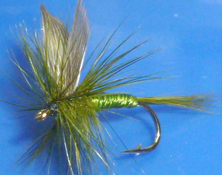 Blue Winged Olive  Dry fly #12 /DR 35