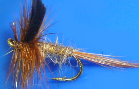Hares ear #14 /DR 41