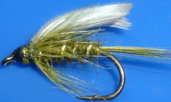 Olive #10,wet fly  (W 49)