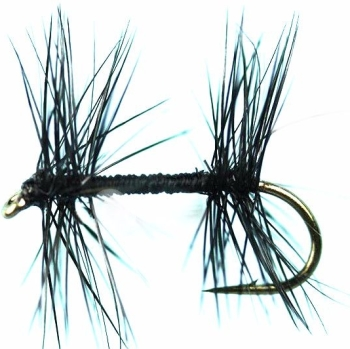 Knotted Midge/DR 58
