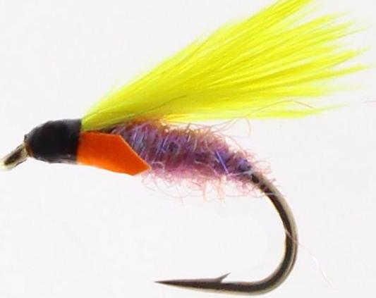 Cormorant,Hot Spot Plum  [cor 23]