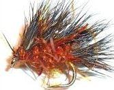 Sedgehog- Fire Brown fritz #16  [H 1]