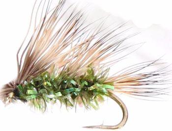 Sedge-hog,  Olive  fritz #12 [H4]