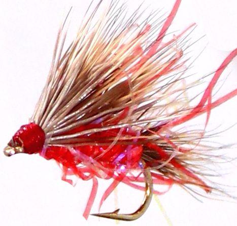 Sedgehog- Pink straggle # 14  [H 5]