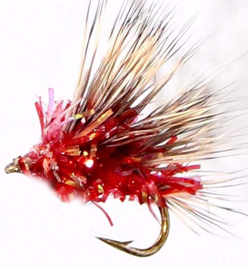 Sedgehog -Pearly Red #14 [H 6]