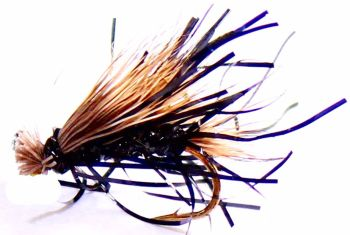 Sedgehog- Black straggle fritz #12 [H 11]