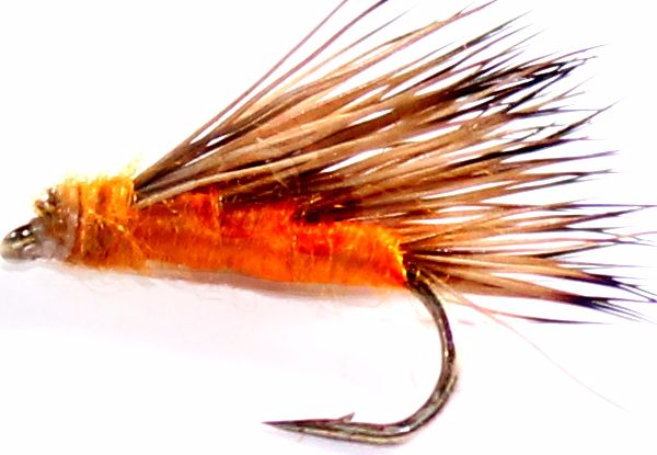 Sedge-hog,  Orange #12 [H 12]