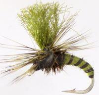 Klinkhammer -   Olive Quill [CP20]