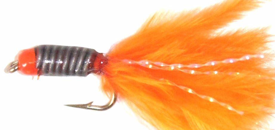 Stalking Bug Orange head Orange  SB3