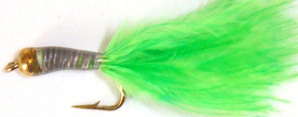 Stalking Bug  Green gold head  SB2
