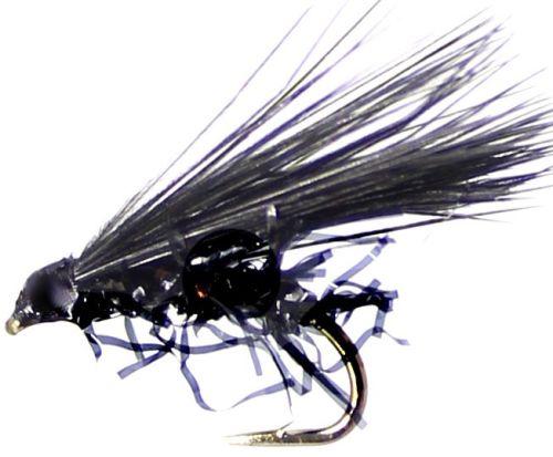 Cormorant,Black straggle / cor 10