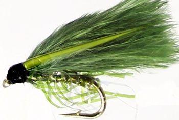 Cormorant, Olive [ cor 1]