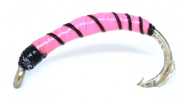 Maggot- Pink-Black #10 [mag19]