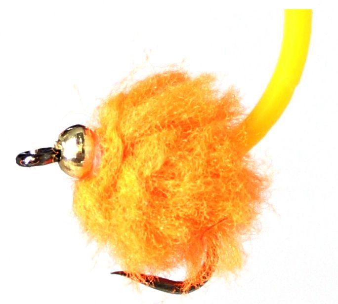 Eggstasy  egg ,Fire Orange- Tailed  [E115]