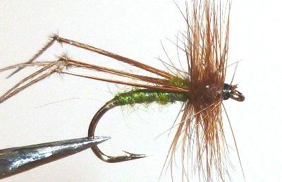 Hopper - olive