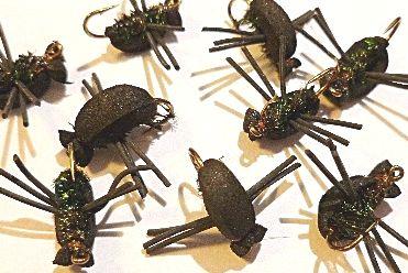 Black Beetle [T1]