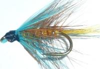 Irish Bumble -invicta [IB 10]