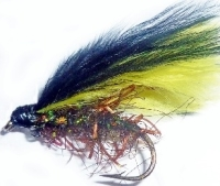Cormorant,Straggle  yellow and black / cor 19