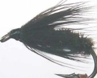 black and peacock,wet fly  (W16)