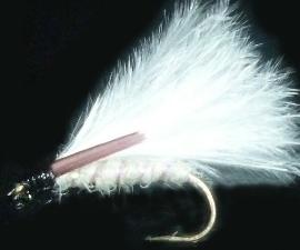 Cormorant White  [cor 17]