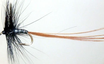 Mayfly /Spinner /Black [M5]