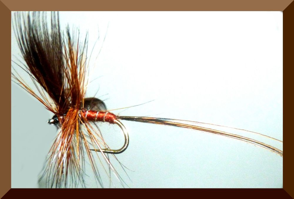 Mayfly ,Brown Drake [M7]