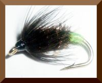 Erics Beetle (W8)