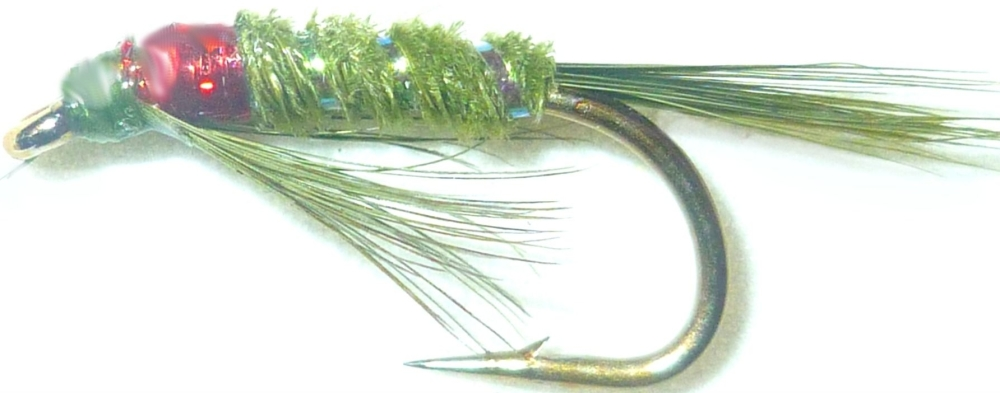 Diawl Bach Olive and Red holographic  #12/ D33