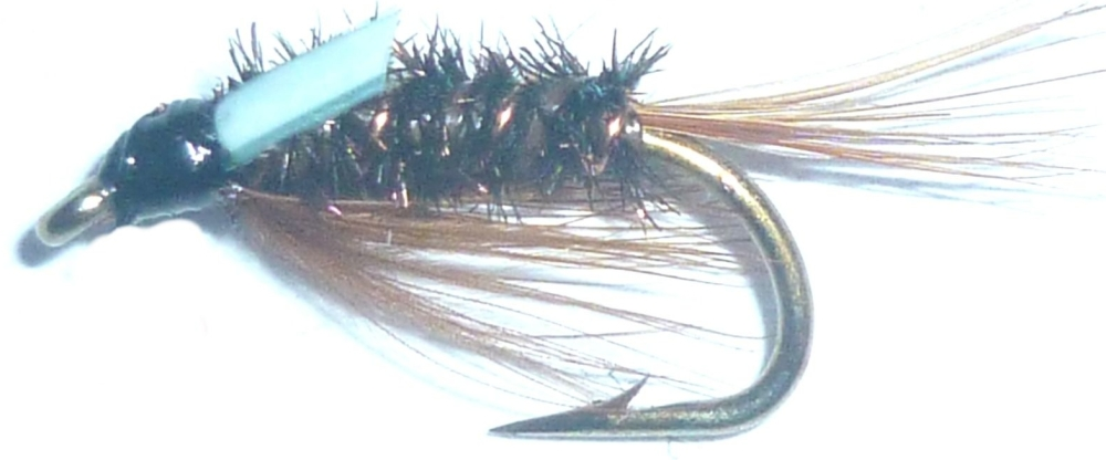 Diawl Bach ,kingfisher #14/ D3