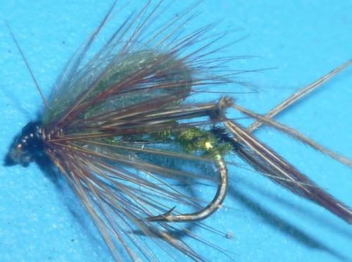 Hopper - CDC Loopwing - Olive [HOP 25]
