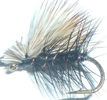Elk hair caddis - Black /DR 28