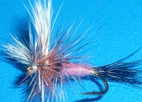 Wulf Ausable #12 /DR 10