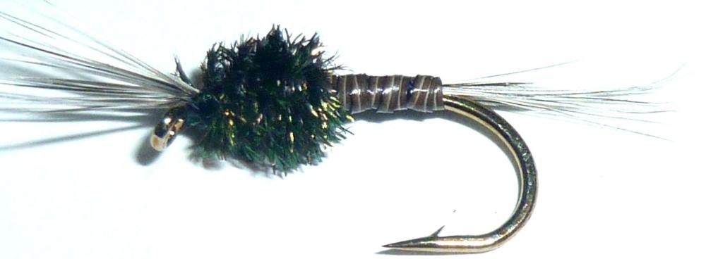 Mosquito Larva [N34]