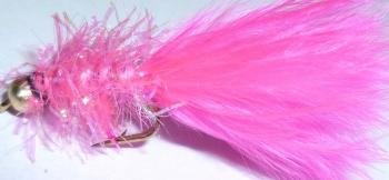 Gold head fritz Pink #12[F11]