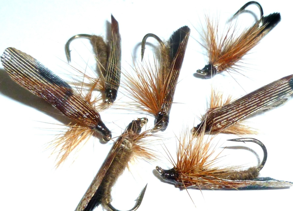 Slow Water caddis - Brown /DR 24