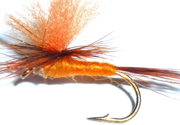 Parachute- lt orange/ CP11