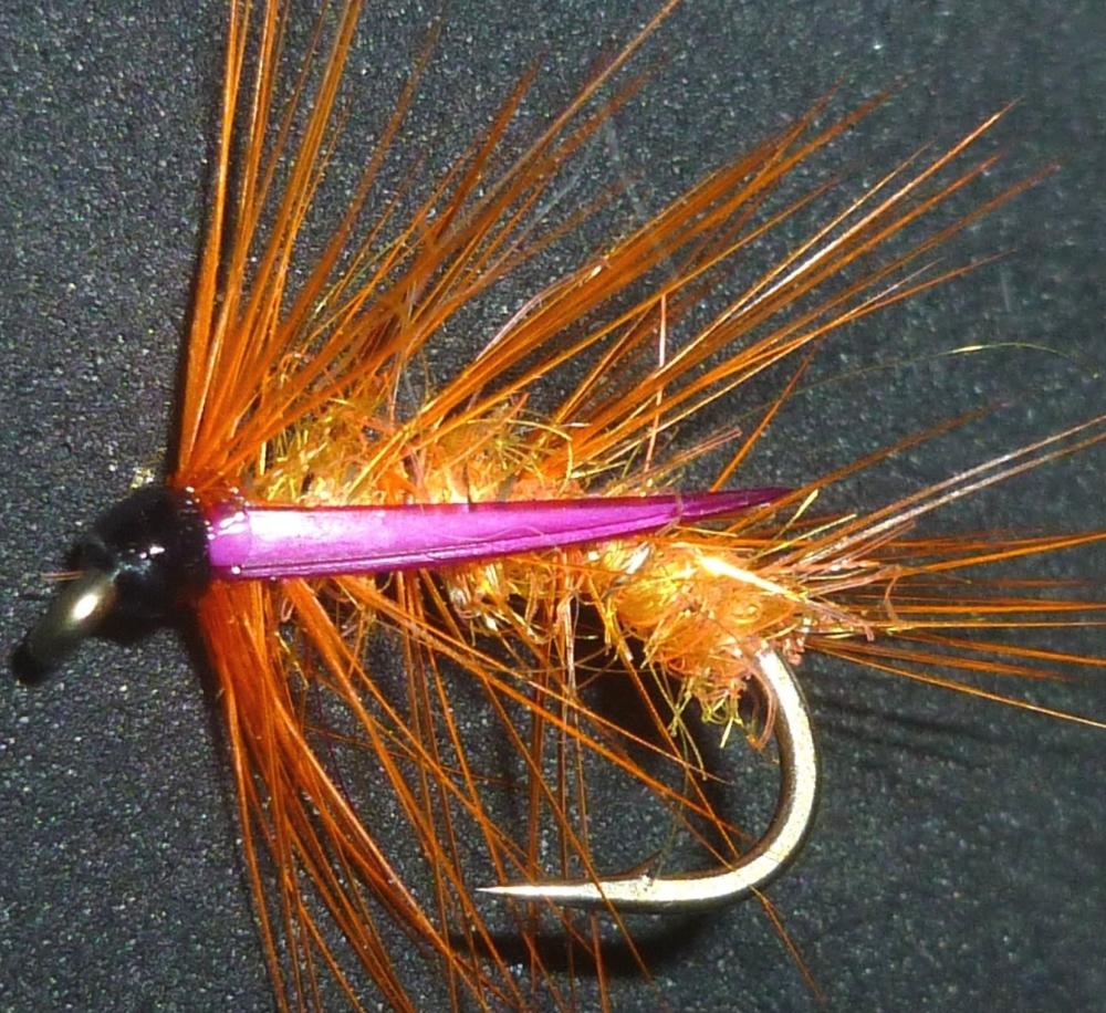 Snatcher -Black-Orange Straggle-fritz / S10