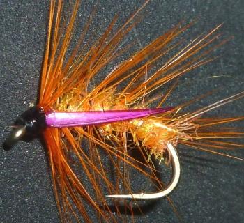 Snatcher,Orange and Majenta / S10